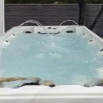 Vits Spa Swim Spa